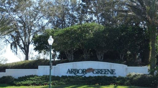 Arbor Green