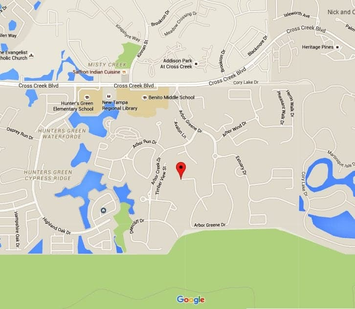 Arbor Oaks Florida: Arbor Greene Community, New Tampa FL