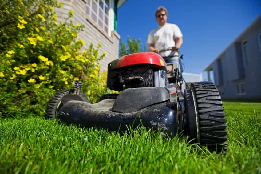 4 spring lawn care tips to grow curb appeal archives tampa homes for sale