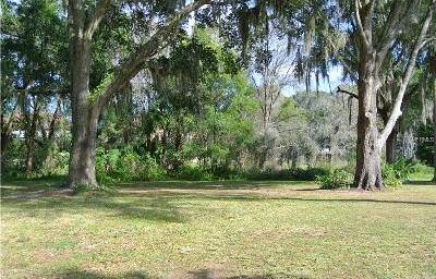 Vacant Land Hillsborough County