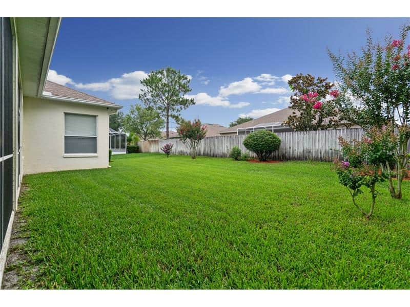 yard tampa homes for sale