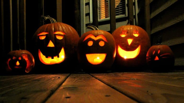Ways you can Recycle Your Pumpkins
