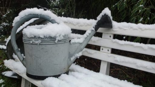5 Winter Assignments that Prepare for Your Best Spring Garden Yet