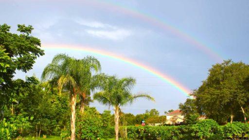 With Rain, You Get Rainbows