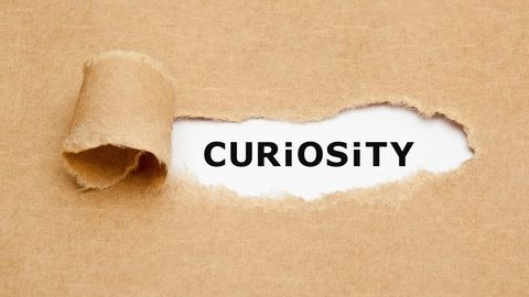 The Art of Being Curious