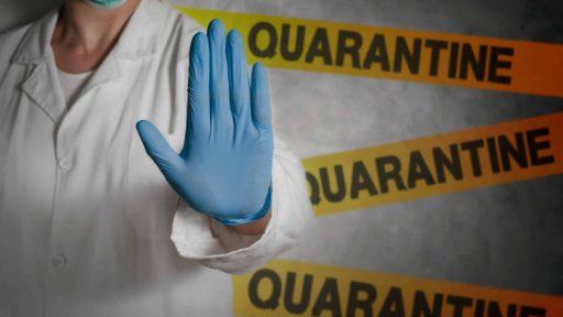 Quarantine Revelations